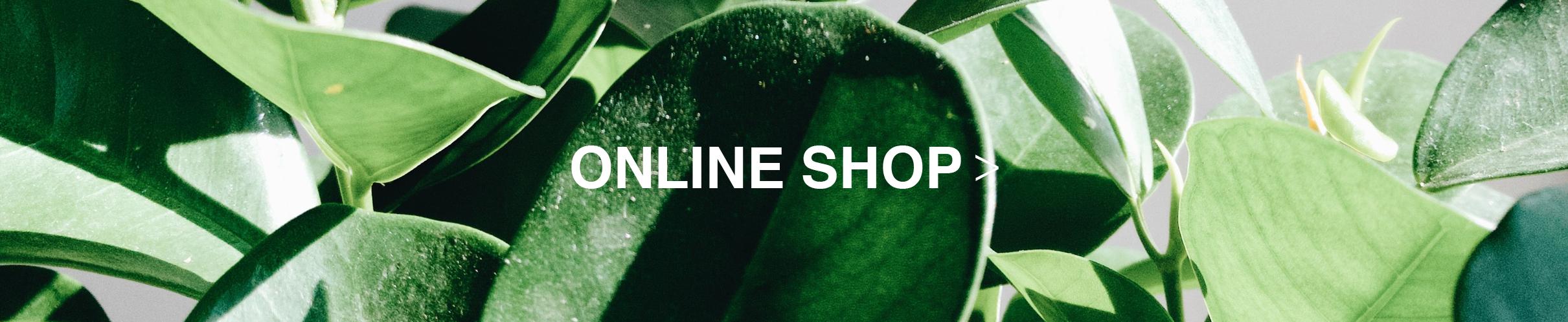 オンラインショップ画像
